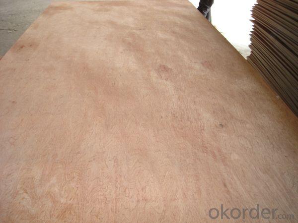 Bintangor Face and Back Plywood Poplar Core BBCC Grade