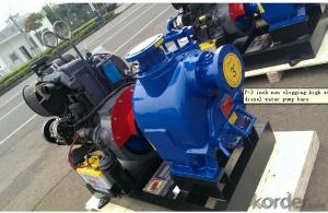 Diesel Driven Self Priming  Water Pump for Irrigation