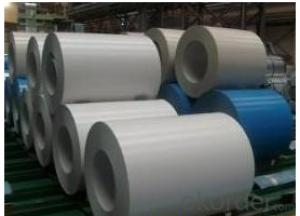 Pre-Painted Galvanized Steel Coil (PPGI/PPGL) in White Color
