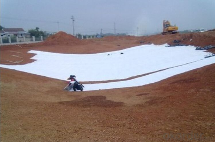 Hot Sell Geocomposite Geosynthetic Clay Liner/GCL