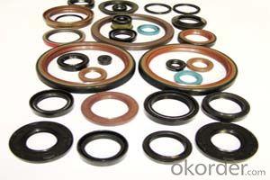 Covered O.D NBR TC Dual Lip Dustproof Mechanical Oil Seal