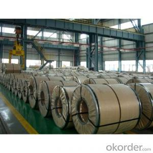 Prepainted Galvanized Steel Coil for Building Decoration
