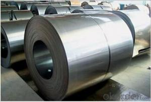 Galvanized Steel Sheet in Coils with Prime Quality and Lowest Price