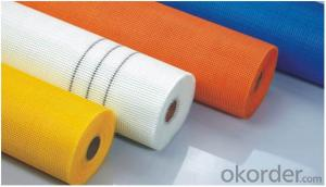 fiberglass mesh with high strength high quality 110g 10*10