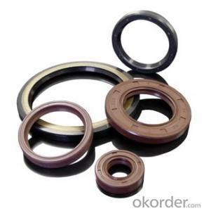 Oil Seal EPDM Various Size VITON/SLILOCN Oil Seal For Machine