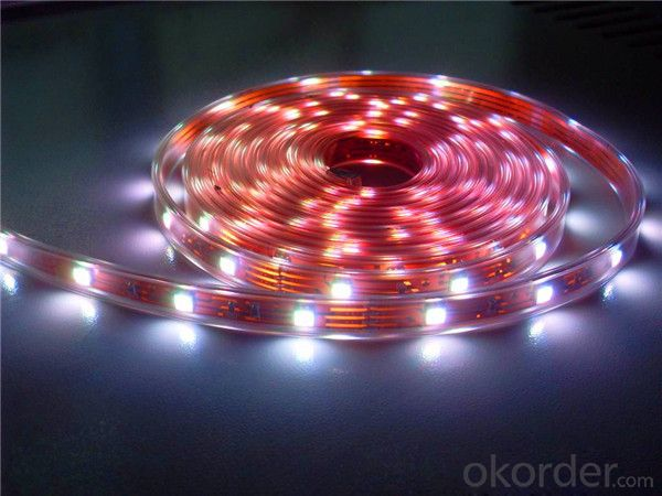 floor case light led strip lighting IP65