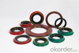 Oil Seal EPDM Various VITON/SLILOCN Oil Seal For Machine