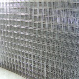 Galvanized Welded Wire Mesh /Widely Used as Guarding Fence