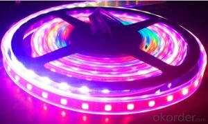 Led strip light for Led  Super Bright with Led Waterproof light