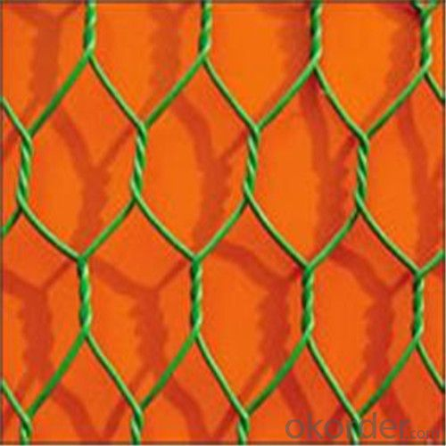 Hexagonal Wire Mesh Netting/good corrosion resistance and oxidation resistance