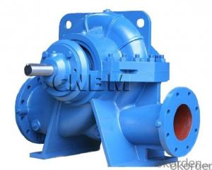 Single Stage Double Suction Water Pump for Irrigation