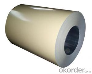 HIGH-DURABLE PREPAINTED STEEL COIL FOR CHEMICAL ROOM
