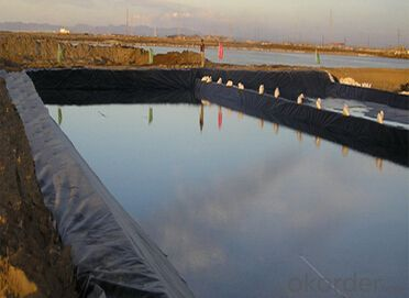 0.15-3mm HDPE/LDPE Geomembrane Price for Liner Piscine