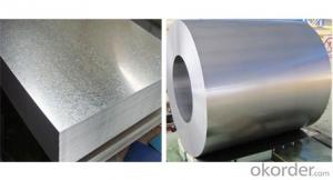 Zinc Coated Galvanized Treatment Steel Coil Z275