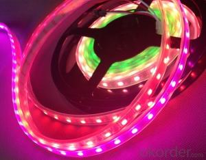 Led strip light for WS2811 48LED series led strip with Led Waterproof light