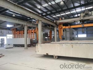 ACC Panel production line with Capacity of 100,000m3