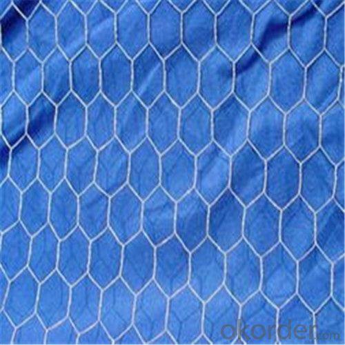 Galvanized Hexagonal Wire Netting / Chicken Netting with High Quality