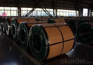 Cold and Hot Rolled 202 Stainless Steel Coil with Top Quality
