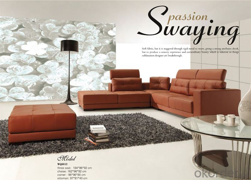 Genuine Leather Seat Sofa Classic and Popular Style