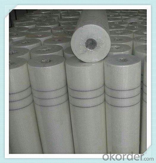Fiberglass Mesh Wall Covering 4*5/Inch 2M