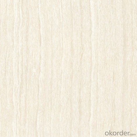 Polished Porcelain Tile The Line stone Gray Color CMAXBJ1118