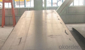 Hot Rolled Carbon Steel Sheet       CNBM