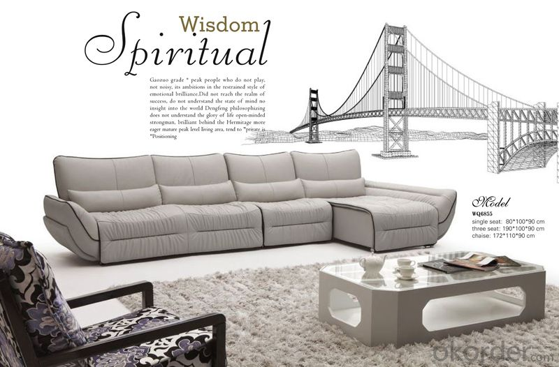 Hot Selling Leather Sofa with Golden Quality