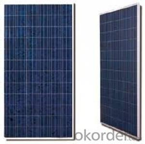 300W  Poly solar Panel Medium Solar Panel Factory Directly Sale CNBM
