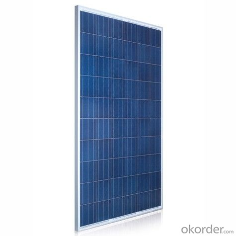 1W  Poly solar Panel Small Solar Panel Factory Directly Sale CNBM