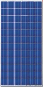 240W  Poly solar Panel Medium Solar Panel Factory Directly Sale CNBM