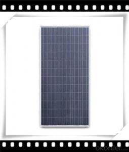 235W Poly solar Panel Medium Poly Solar Panel Newest Solar Panel CNBM