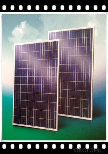75W Poly solar Panel Mini Solar Panel Hot Selling Solar Panel CNBM