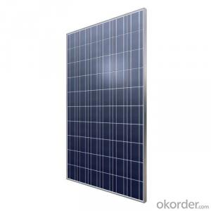65W  Poly solar Panel Small Solar Panel Factory Directly Sale CNBM