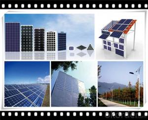 250W Poly solar Panel Mediuml Solar Panel Manufacturer in China CNBM