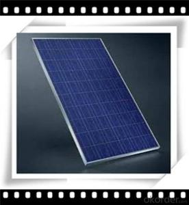 240W Poly solar Panel Mediuml Solar Panel Hot Selling Solar Panel CNBM