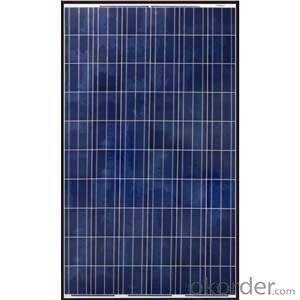 250W  Poly solar Panel Medium Solar Panel Factory Directly Sale CNBM