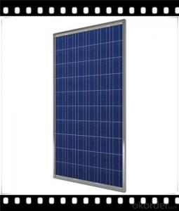 250W Poly solar Panel Mediuml Solar Panel Hot Selling Solar Panel CNBM