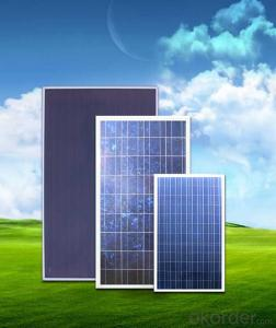 Polycrystalline solar Panel with High Quality Best Price CNBM