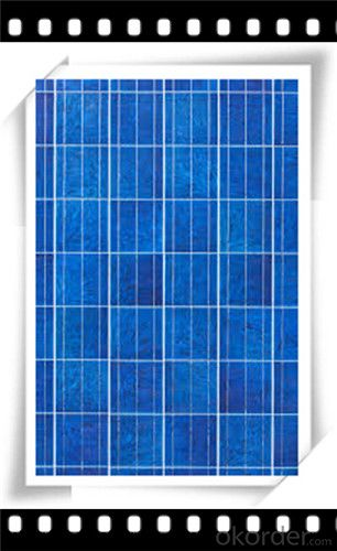 240W Poly solar Panel Mediuml Solar Panel Hot Selling Solar Panel CNBM