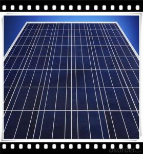 50W Poly solar Panel Mini Solar Panel Hot Selling Solar Panel CNBM