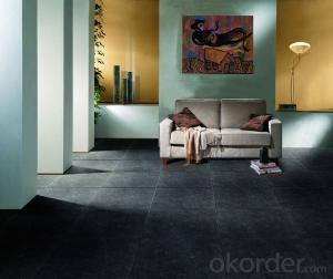 Glazed Porcelain Tile PARIS Serie EIFFEL PAEF24