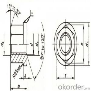Flange Screws Nylon Lock Nut/ Good Quality and Nice Price/Made in China