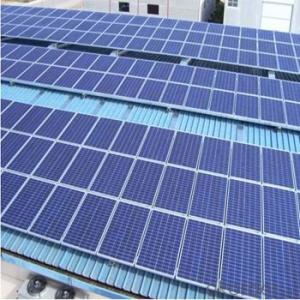 Polycrystalline Solar Panels for 255W Series