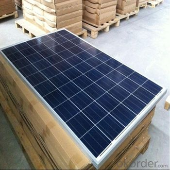 Polycrystalline Solar Panels for 245W Series