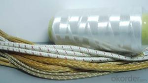 Plastic Nylon 6/66 Yarn for sock and rope