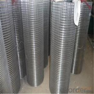 Galvanized Welded Wire Mesh for Building Material Factory Price with High Quality