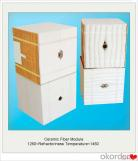 Módulo refractario de fibra cerámica o revestimiento aislante térmico para horno industrial