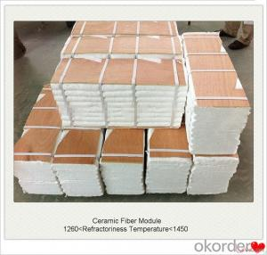Ceramic Fiber Module Lining of Furnace and Kiln Refractory and Insulation