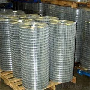Galvanized Welded Wire Mesh /Widely Used wigh Good Quality and Nice Price