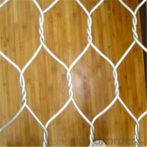 Hexagonal Wire Mesh Fence Chicken Netting Galvanized wire of PVC Coated
